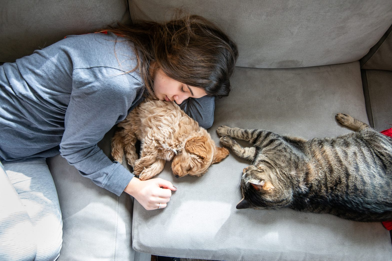 A woman sleeping on the couch with a dog and cat.